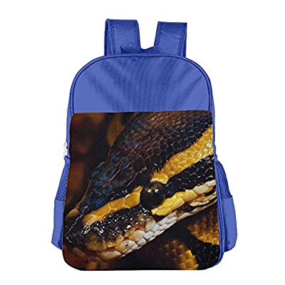 chic OUSIAI Cat Boys School Backpacks Bags For Kids Girls Ages 4-15 Blue
