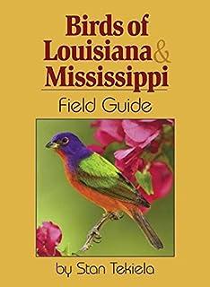 Birds Of Louisiana U0026 Mississippi Field Guide (Bird Identification Guides)