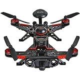 Walkera Runner 250 Advance GPS System RC Drone Quadcopter RTF with DEVO 7 Remote Control / OSD / Camera / GPS V4 (800TVL Camera)