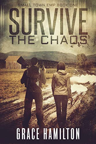 Survive Chaos Small Town Book ebook product image