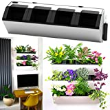 MyEasygro Self Watering Wall Planter by for Indoor and Outdoor | Mounted Hanging Vertical Urban Garden Decor | Green Wall Pots for Flowers, Plants, Herbs, Vegetables, Seeds | 22.5″x7″x7″ (1, White) For Sale