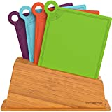Vremi 5 Piece Cutting Board Set with Holder - Color Coded Plastic Cutting Board Set - Small Mini Index Cutting Boards Dishwasher Safe BPA Free Colored Cutting Boards for Vegetable Meat or Cheese