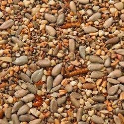 JOHNSTON AND JEFF'S 25KG ROBIN FOOD WITH MEALWORMS WILD BIRD FOOD ( 2 X 12.5KG )