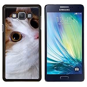 KLONGSHOP // Cubierta de piel con cierre a presión Shell trasero duro de goma Protección Caso - Gato Cymric Bobtail americano somalí - Samsung Galaxy A7 A7000 //