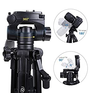 Mini Tripod - Camopro Portable Desktop Mini Tabletop Tripod for SLR DSLR Camera iPhones Smartphones Binoculars and Camcorder with 3-Way Head, Quick Release Plate and Carrying Bag