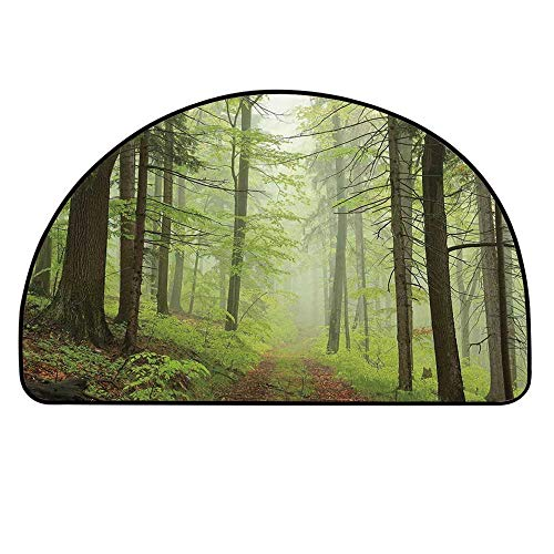 YOLIYANA Outdoor Entry Mat Rugs,Trail Trough Foggy Alders Beeches Oaks Coniferous Grove Hiking Theme for Front Door,31.4