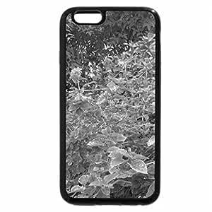 iPhone 6S Case, iPhone 6 Case (Black & White) - Nature 01