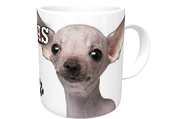 Chihuahua Blanc Pour Chien Sh 10fl Oz Tasse En Céramique Passe Au