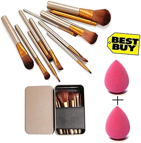 NAKED PLUS Brush Set of 12 with storage box + 2 sponge puff (color may vary)