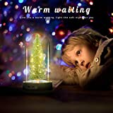 Aizara LED Christmas Decoration Tree in Glass with String Lights Decoration for Bedroom, Patio, Garden, Gate, Yard, Parties, Wedding