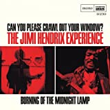 Can You Please Crawl Out Your Window? / Burning of the Midnight Lamp
