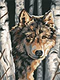 Dimensions Needlecrafts Paintworks Paint By Number, Wolf Among Birches