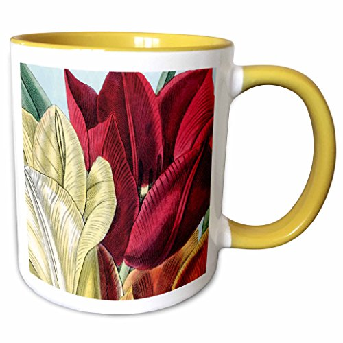 3dRose PS Vintage - Vintage Tulip Flowers - 11oz Two-Tone Yellow Mug (mug_203816_8)