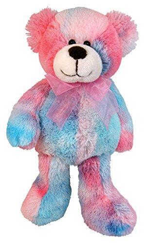 Cute Little Teddy Bear (Stephan Baby Soft and Huggable Plush Tie-Dye Teddy Bear, Pinks and)