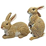 Design Toscano QM6200861 Bashful and Hopper Garden Bunnies Collection