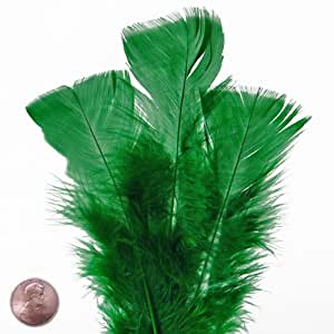 Large Green Turkey Flat Feather (50/Pack)