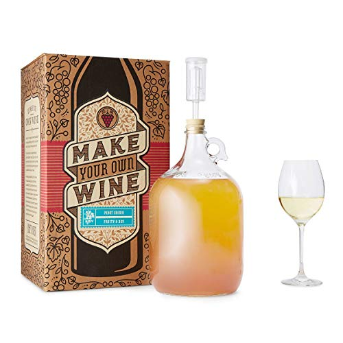 the 1 gallon fruit winemaking kit - 6