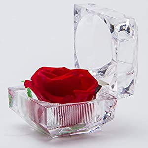 Handmade Preserved Fresh Flower Rose with Acrylic Crystal Box - Romantic Small Gift Ideas for Valentine's Day, Birthday,Thanksgiving Day 120