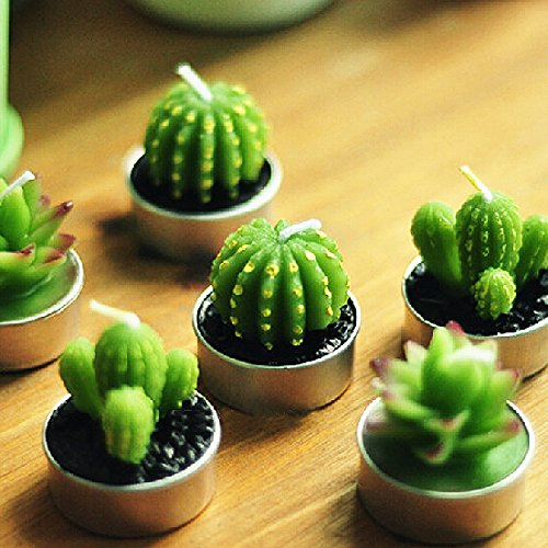 Assortment of Mini Green Desert Succulent Plants Scented Candles Wedding Party Decoration (In Gift Box) Attached with Gift Card