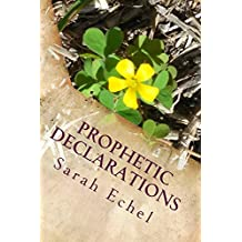 Prophetic Declarations: Heaven Released Through the Power of Your Words
