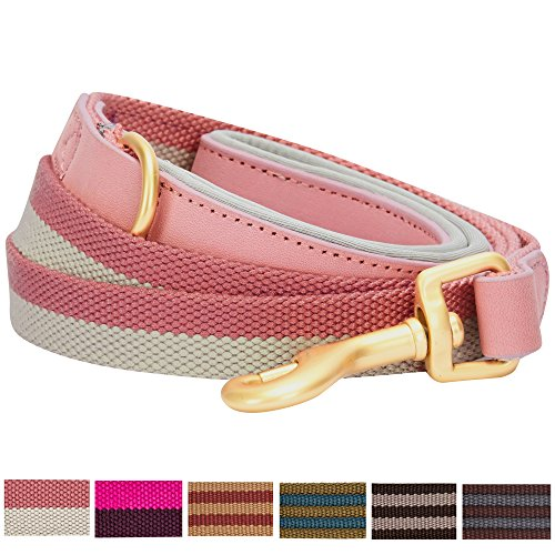 Blueberry Pet 6 Colors Classic Staple Striped Genuine Leather and Polyester Webbing Dog Leash with Soft & Comfortable Handle, 4 ft x 3/4