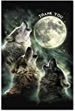 Tree-Free Greetings EcoNotes Thank You Card Set, 4 X 6-Inch, 12-Count Cards with Envelopes, Three Wolf Moon 94682