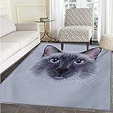 Animal Door Mats Area Rug Portrait Image Thai Siamese Cat Retro Style Lettering Artwork Floor mat Bath Mat tub 48''x71'' White Sky Blue Grey