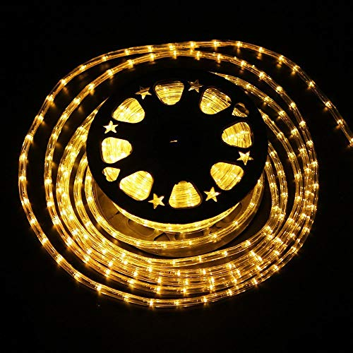 100 Foot Led Rope Light in US - 7