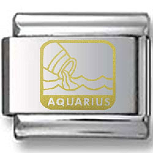 Water Gold Laser Charm (Aquarius the Water Carrier Gold Laser Italian Charm)