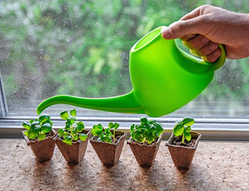 Mr. Sprout & Co.Organic Herb Seed Starter Kit - Small Indoor Herb Garden Made Easy - Indoor Herb Starter Kit Includes Basil, Parsley, Cilantro, Mint, And Chives