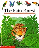 The Rain Forest (First Discovery Book)