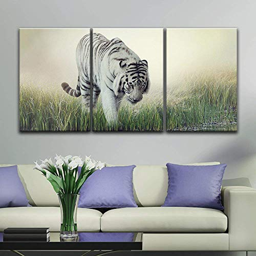 3 Panel White Tiger Wading in The Water x 3 Panels