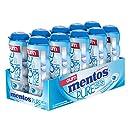 Mentos Gum Pocket Bottle, Pure Fresh Mint, 1.06 Ounce (Pack of 10)