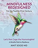 Mindfulness Redesigned for the Twenty-First Century: Let's Not Cage the Hummingbird A Mindful Path to Resilience
