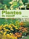 Plantes de massifs par Koenig