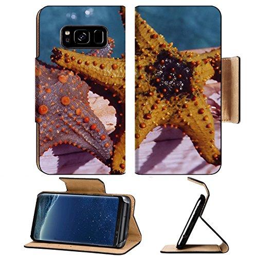Zanzibar Leather (MSD Premium Samsung Galaxy S8 Plus Flip Pu Leather Wallet Case IMAGE ID: 332961 starfishes on a boat in Zanzibar Tanzania)