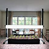 Park Seed 24-inch Tabletop Plant Light