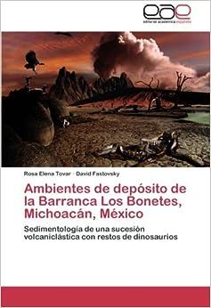 Ambientes de depósito de la Barranca Los Bonetes, Michoacán, México: Sedimentología de una sucesión volcaniclástica con restos de dinosaurios