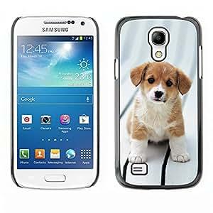 Vortex Accessory Carcasa Protectora Para SAMSUNG GALAXY S4 MINI i9190 (MINI VERSION) - Beagle Puppy Dog Brittany Canine -