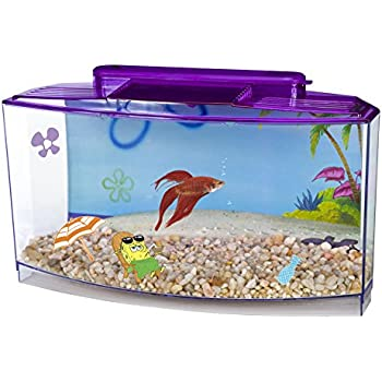 Penn plax spongebob 39 s large betta aquarium for Betta fish tanks amazon