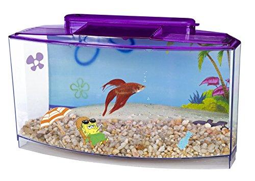 large aquarium tank - 7