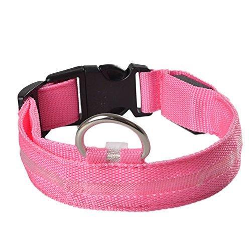 Stripe Safety Collar Flashing Visible