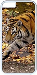 Animals Tigers #27478 Apple iPhone 6 Case, iPhone 6 Cases PC White Hard Shell Cover Skin Cases