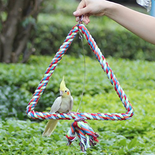 KINTOR Medium Triangle Rope Swing Bird TOY Parrot Cage Toys Cages Conure African Grey by KINTOR (Image #4)