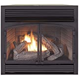 vent free insert - Duluth Forge Dual Fuel Vent Free Fireplace Insert - 32,000 BTU, Remote Control, FDF400RT-ZC