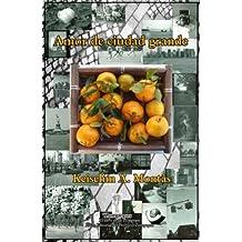 Amor de ciudad grande (Spanish Edition)