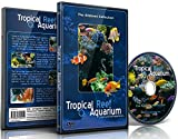 natural aquariums - Aquarium DVD - Tropical Reef Aquarium - Filmed In HD - with Natural Sound and Relaxing Music