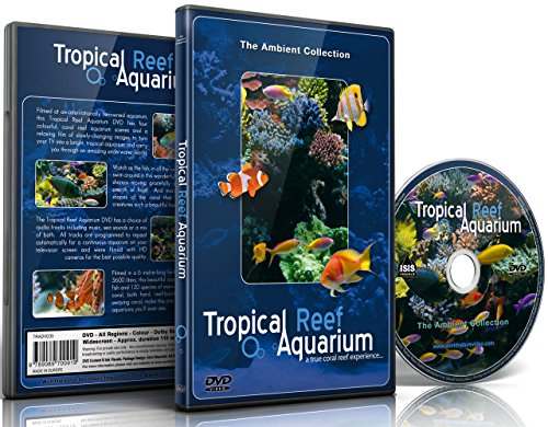 Refurbished Feed (Aquarium DVD - Tropical Reef Aquarium - Filmed In HD - with Natural Sound and Relaxing Music)