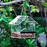 LULUDP-Feeders Small House Bird Feeder Outdoor Bird Feeder Acrylic Bird Feeder With Suction Cup Glass Bird Feeder Bird Feeder
