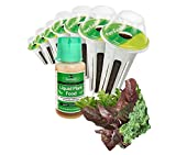 Green Smoothie Seed Kit by Aerogarden with Kale, Mustard and Beet Greens, 6-Pod